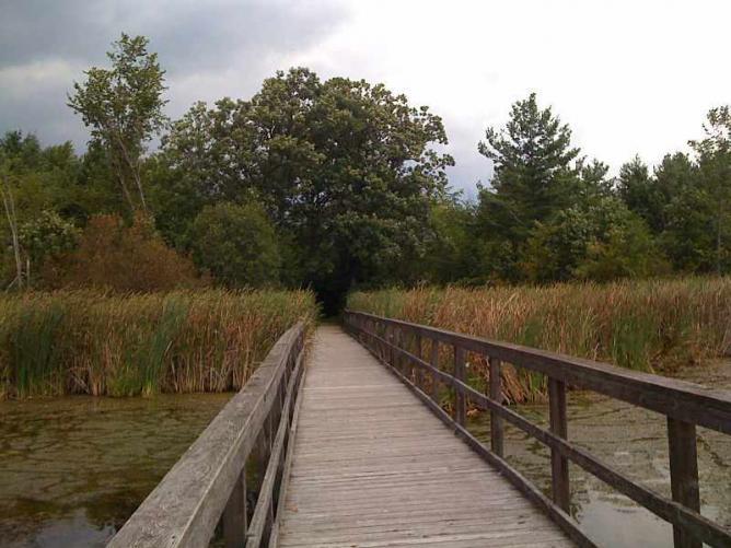 Little Cataraqui Creek Wetland