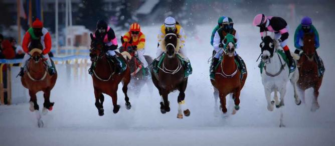 White Turf horse race 2015