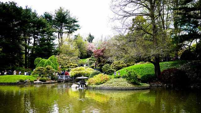Brooklyn Botanic Garden   vishpoolFlickr