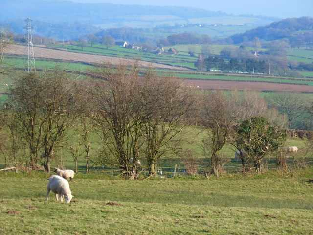 Tranquil scene in rural South East Wales, near Croesyceiliog. Wales is the setting for Amis' Booker winner The Old Devils |© Ruth Sharville/Geograph
