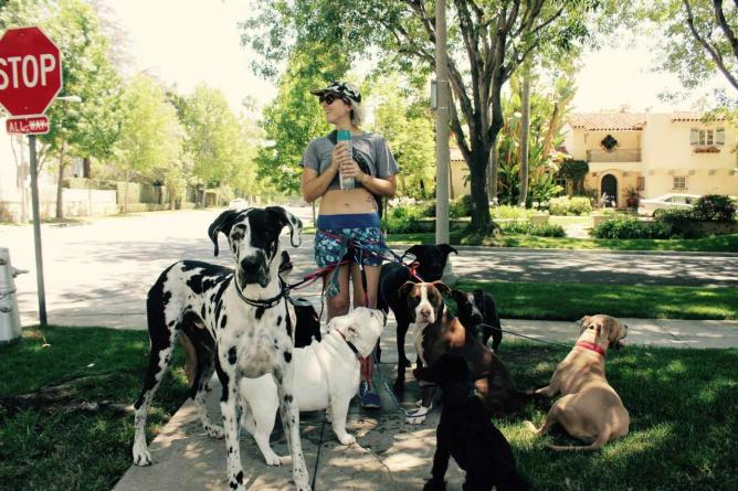 Rachel Allen and her pack - The Healing Pack © Sam Worman/ Tumblr
