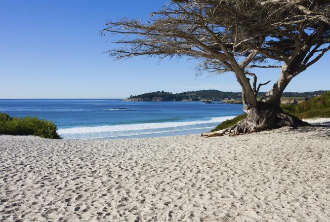 Carmel Beach | Courtesy of carmelcalifornia.com