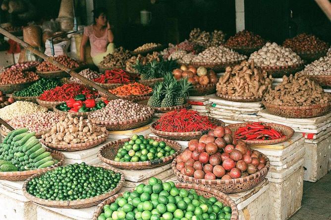 Fruit and Vegetable | © Margarita Milne