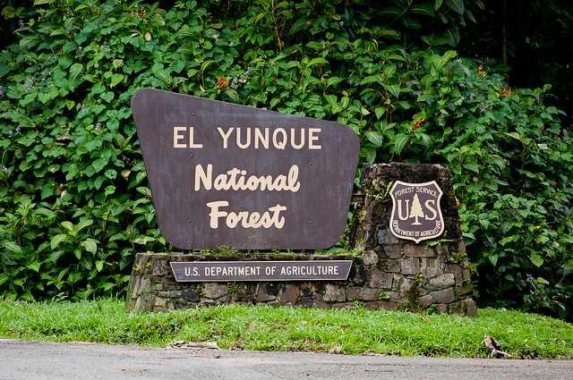El Yunque National Forest entrance | © vxla/Flickr