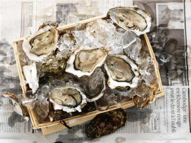 Oysters   Courtesy of B.A.R.