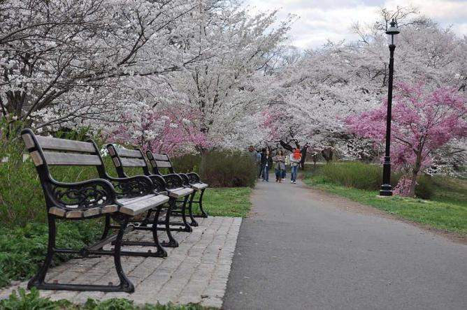 Branch Brook Park | © Siddharth Mallya/WikiCommons