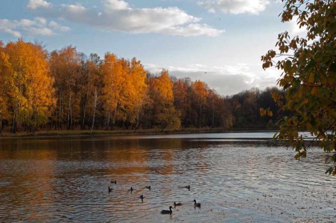 Izmailovsky Park © Sergey Yeliseev/Flickr