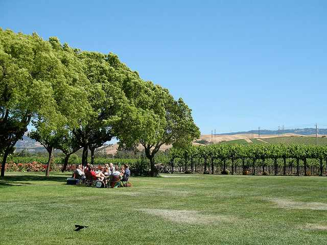 A Californian winery | © Squidish/Flickr