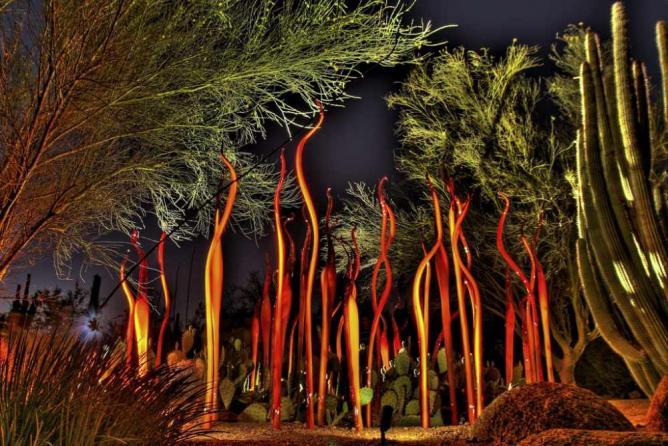 Desert Botanical Garden | © Right Brain Photography/Flickr