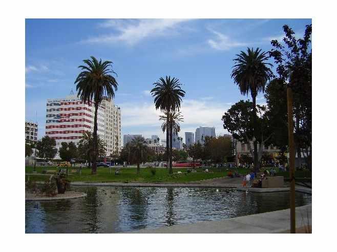 MacArthur Park, Los Angeles   © C. Marie Cradle
