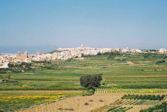 Qala and surrounding fields