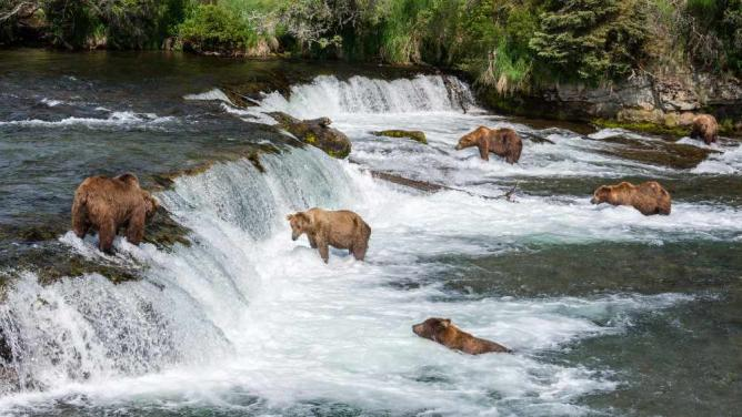 Katmai | © Christoph Strässler/Flickr