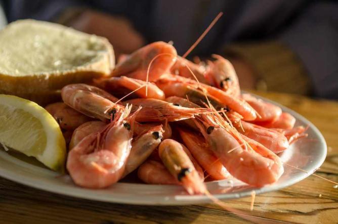 Shrimp Cruise | © Aktiv i Oslo.no/flickr