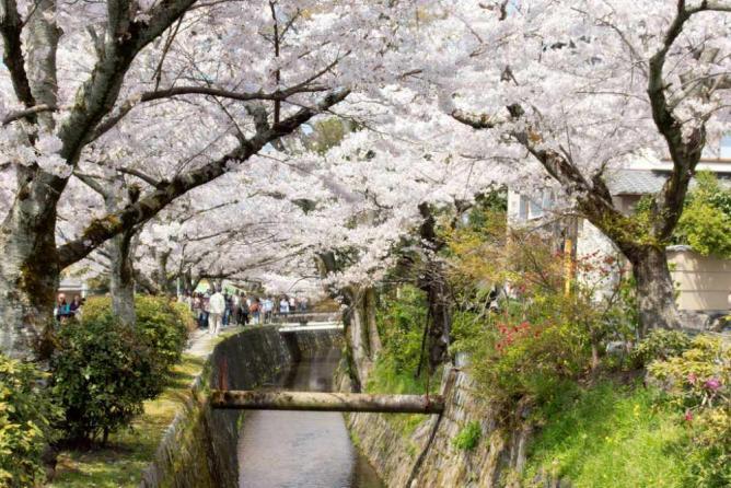 Tetsugaku no michi, Kyoto   © Kimon Berlin/Flickr