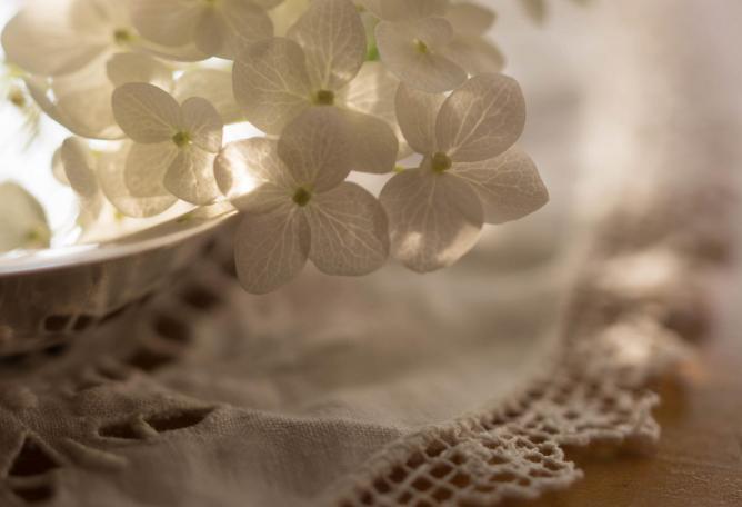 Linen and lace | © Julie Jablonski/Flickr
