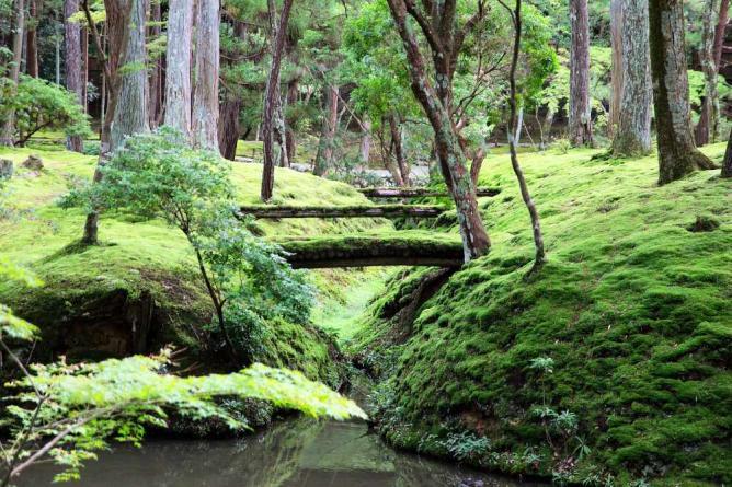 Saiho-ji moss garden