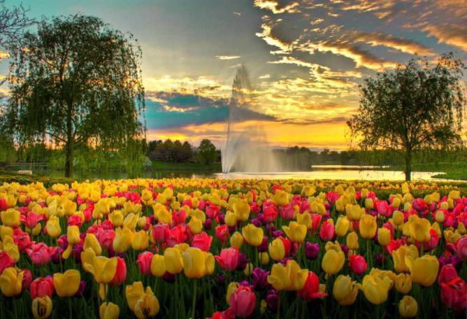 Chicago Botanic Garden © Sandeep Pawar/Flickr