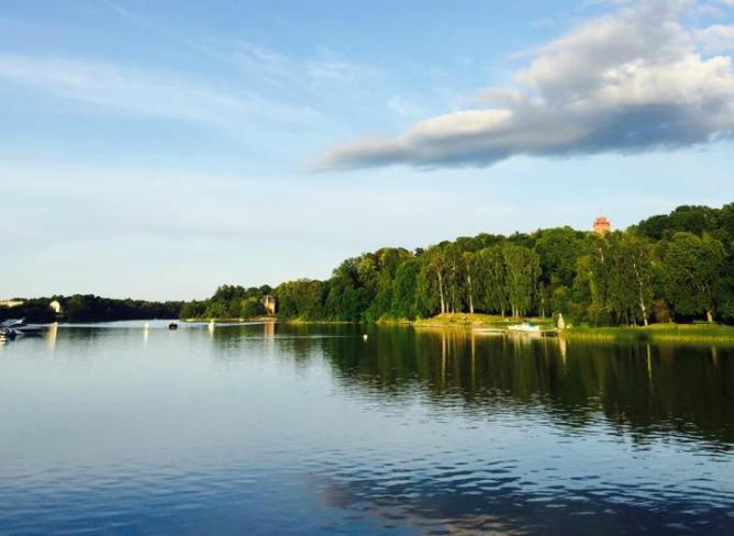The Top 10 Things To See And Do In Djurg 229 Rden Stockholm