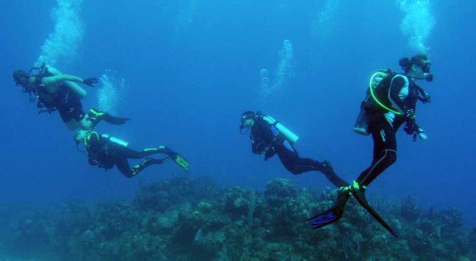 Scuba / Snorkeling | & # XA9؛ عکس نیروی دریایی ایالات متحده توسط متخصص ارتباطات جمعی کلاس اول Jayme Pastoric / WikiCommons