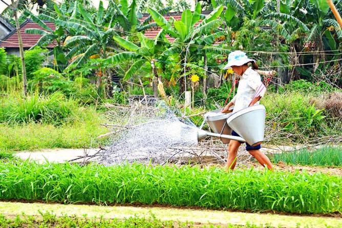 Tra Que Village   © Loi Nguyen Duc/Flickr