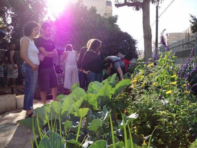 Urban gardening | © HaRav Kuk Community Garden