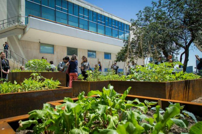 United Nations Food Garden Opening   © John Gillespie/Flickr