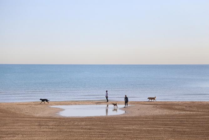 Montrose Beach | © Diana Nguyen/Flickr