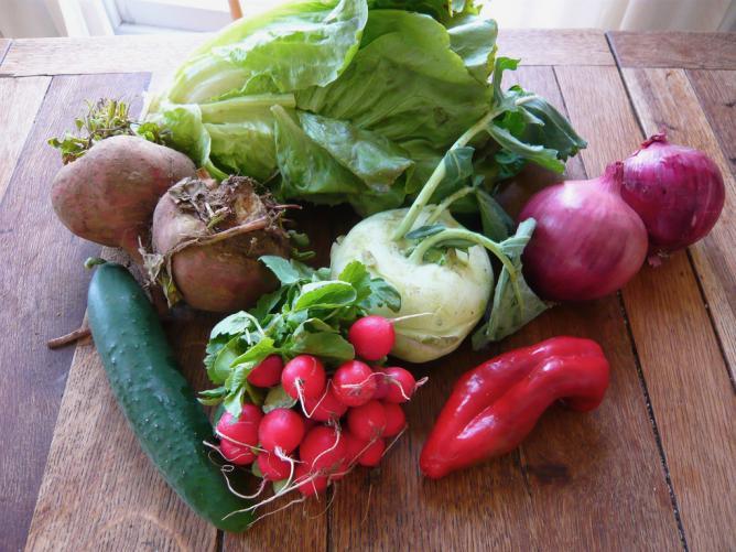 Seasonal Vegetables | © Jessica Spengler/Flickr