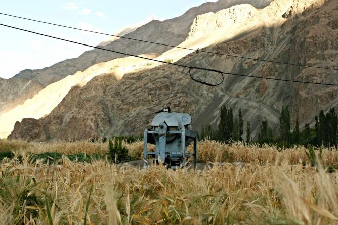 Fields of Barley, Turtuk