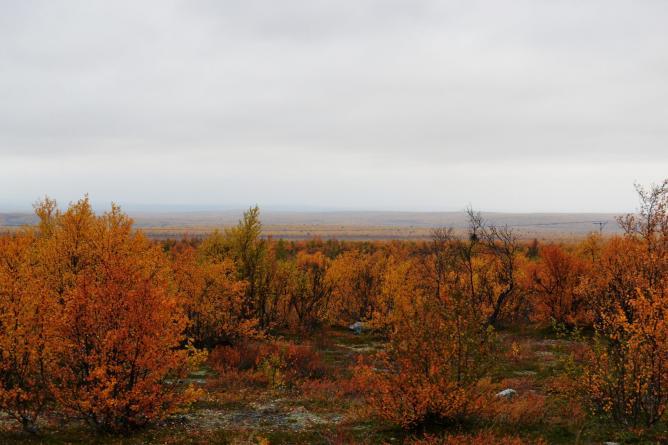 Lapland © Tero Mononen/Flickr
