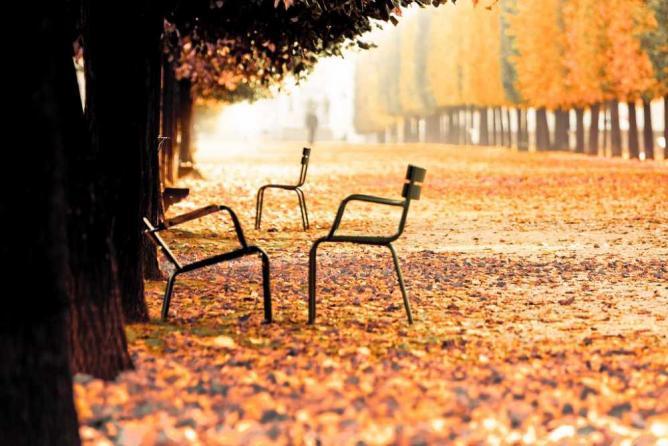Autumn in the Tuileries Garden | © Ryan Blyth/Flickr