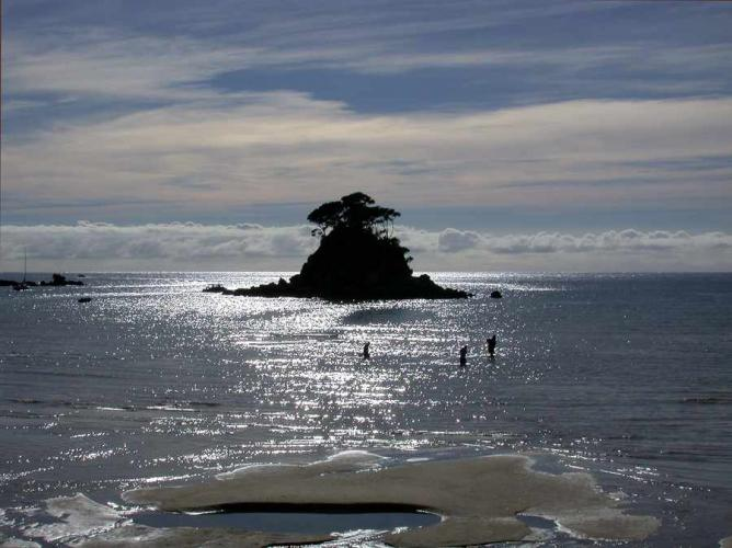 Torrent Bay at Able Tasman National Park   ©Anya Langmead/WikiCommons
