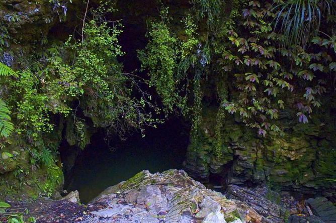 Waitomo cave entrance | © Uberraschungsbilder/WikiCommons