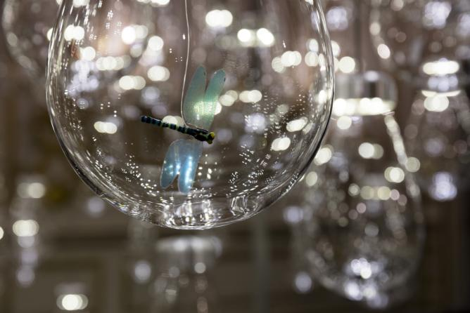 Glass globes & insects create the Curiosity Cloud | Courtesy of Ed Reeve