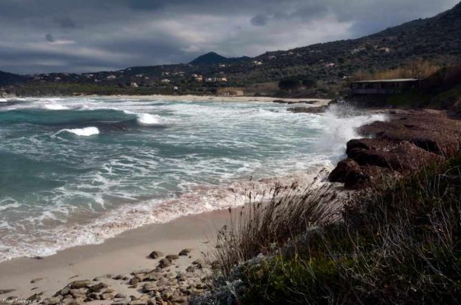 Corbara beach   © Dany Tolenga/Flickr
