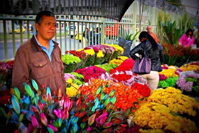 Flowers at Plaza de Mercado Paloquemao  © TheRealBogota/Flickr