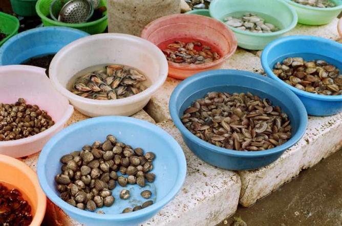 The best markets in nassau bahamas for Bahamas fish market