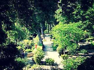 Botanical Gardens | © Peter/Flickr