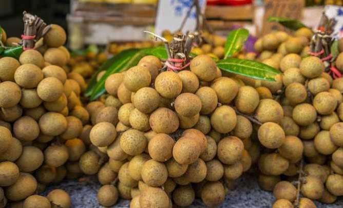 The 10 Most Exotic Fruits In Manhattan's Chinatown, New York Bumpy Texture Fruit