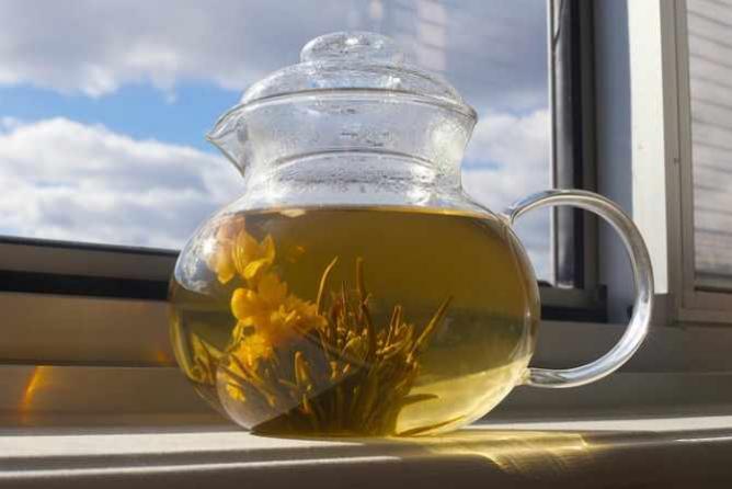 morning pot of tea | © Beau Finley/Flickr