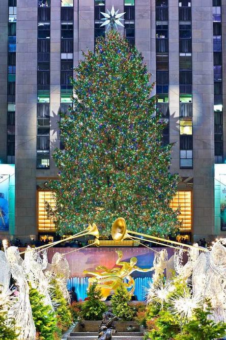 Rockefeller Center Holiday Tree l © Bart Barlow/Tishman Speyer
