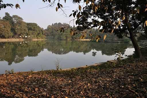 Alipore Zoological Garden - Kolkata 2011-01-09 0074   © Biswarup Ganguly/WikiCommons