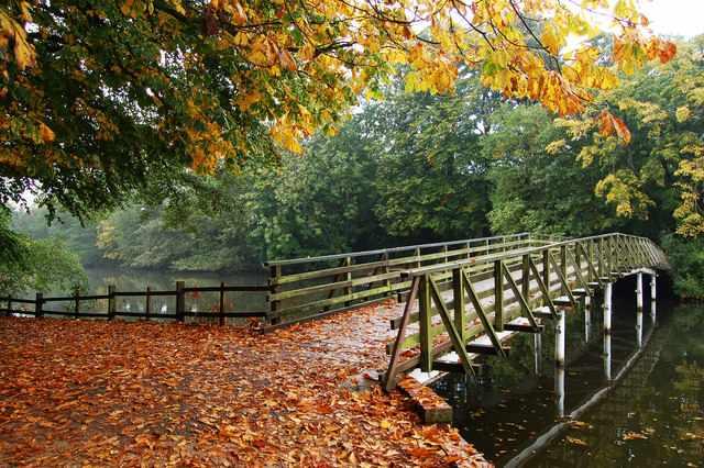 A Creative Commons image: White Bridge, Hartsholme Country Park, Lincoln | Attribution: John Bennett