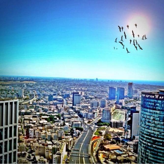 Shai Cohen Tel Aviv