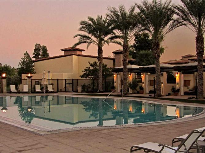 The Poolside With Its Palm Trees At Omni Hotel