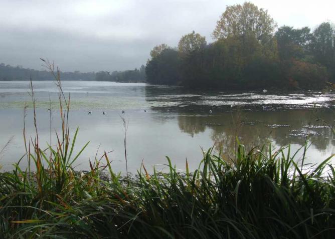 Dijon Lac Kir | © Christophe.Finot/Wikicommons