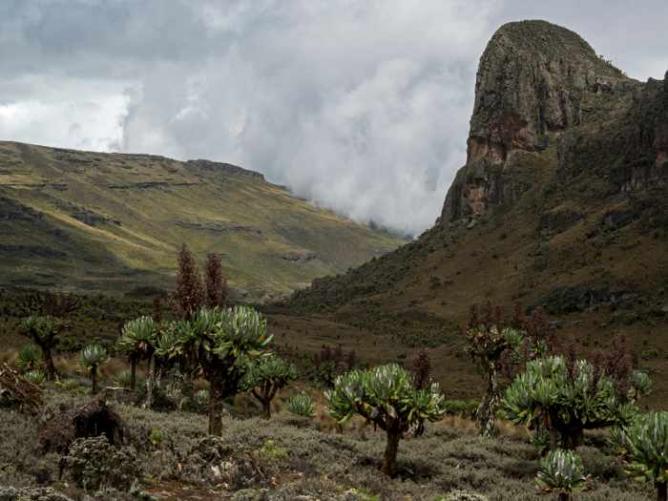 From 'Reaching the Peak', Mount Elgon NP | © Stuart Cohen