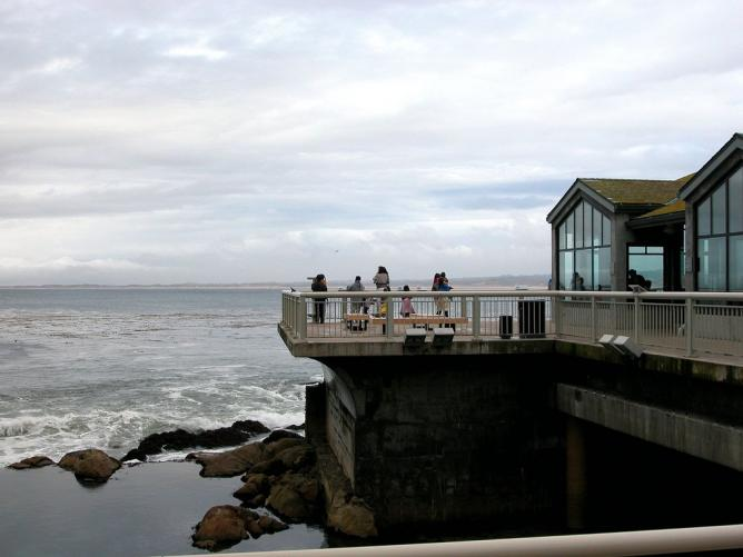 DSCN0603-Monterey Bay | © Gail Frederick/Flickr