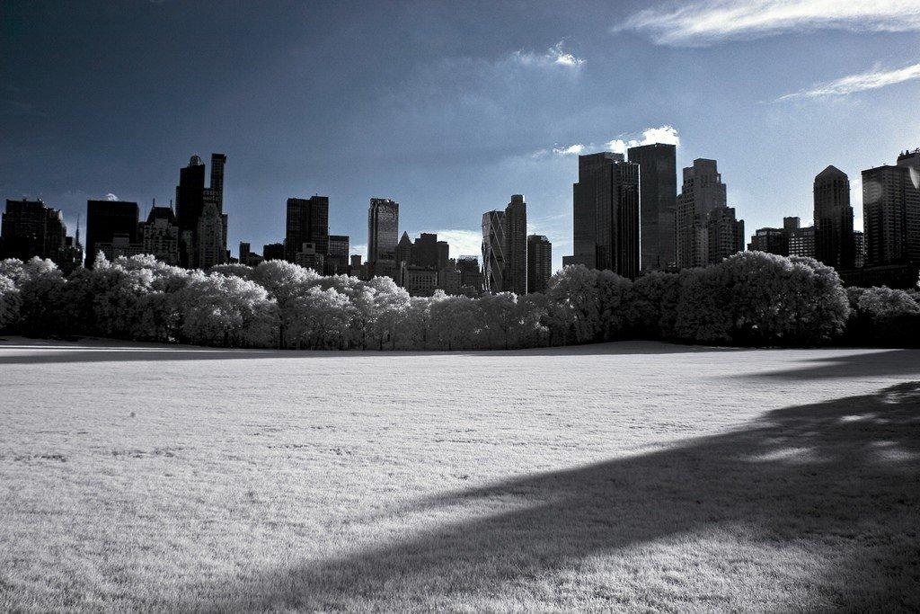 Central Park ©Alan Strakey