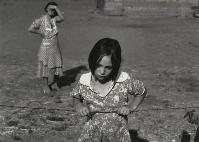 Daring to Look: Dorothea Lange's Photographs and Reports from the Field:  Anne Whiston Spirn: 9780226769851: Amazon.com: Books